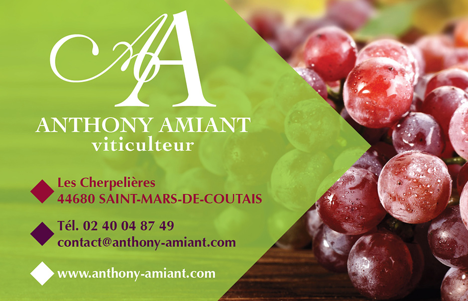 Anthony AMIANT