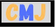 Conseil municipal Jeunes de St mars de coutais 44680